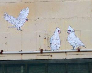 Elysha Rei - Birds on a Wire