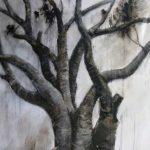 Moreton Bay Fig artwork