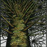 Bunya Pine artwork