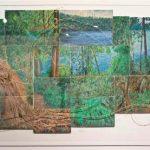 Lake Eacham artwork