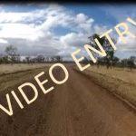 Glendon (video entry) artwork