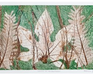 Philomena Yeatman, Leaves of the rainforest, 2017, Etching on paper, 61 x 40cm