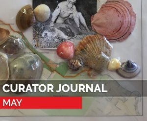 curator journal - may